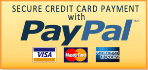 We accept PayPal, VISA, MC, and Amex